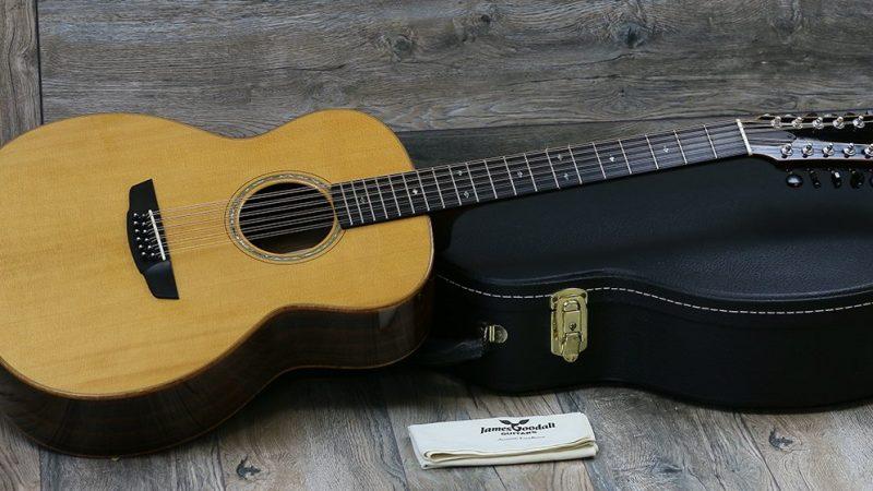 Best 12 String Guitar Reviews